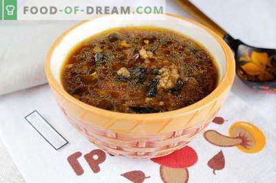 Sopa de champiñones deshidratada - las mejores recetas. Cómo cocinar adecuadamente y sabrosa la sopa de champiñones secos.