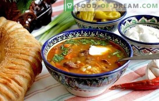 Receta paso a paso para la sopa de pollo, cordero o kharcho de ternera. Métodos para cocinar la sopa de pollo kharcho en una receta paso a paso