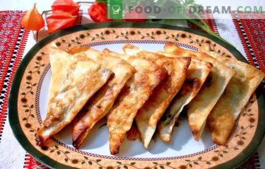 Chebureks de pita - perezoso, ¡pero delicioso! Carne, queso y rellenos combinados para bizcochos de lavash