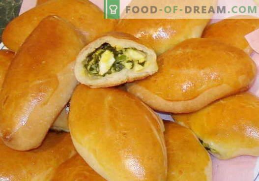 Las empanadas de huevo son las mejores recetas. Cómo cocinar correctamente y sabrosos pasteles de huevo.