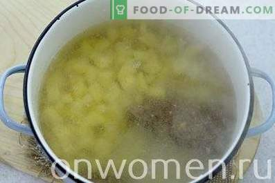 Sopa con bolas de masa hervida