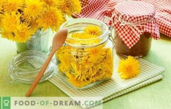 Mermelada de diente de león: ¿es sabrosa? Cómo cocinar mermelada de flor de diente de león